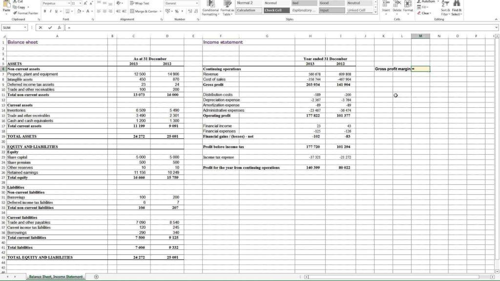 Profit  Loss Statement Example and Doc Profit Loss Statement