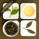 Fushoushan High Mountain Winter Oolong