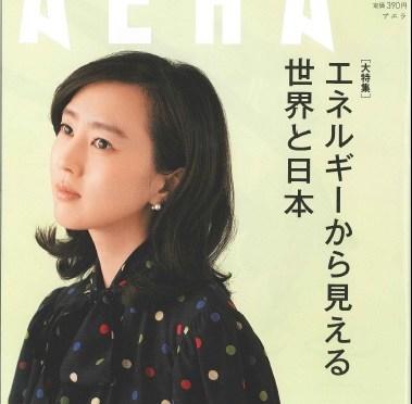 株式会社宝塚すみれ発電