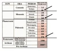 Geologic Time Scale Worksheet Middle School. Geologic ...