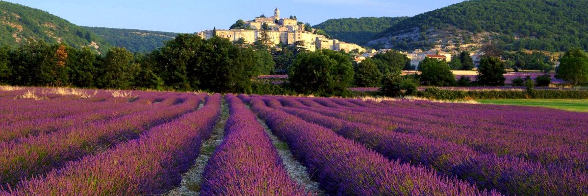 Four Days in Provence