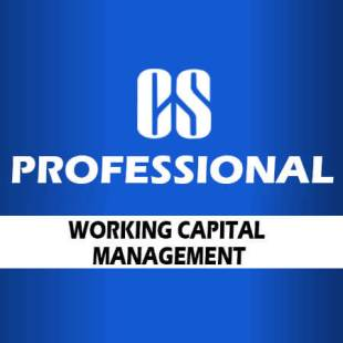 cs-prof-working-capital-mgmt