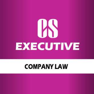 cs-exec-comp-law
