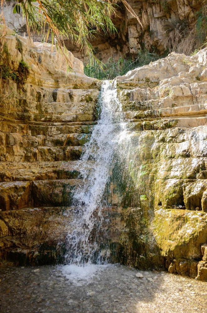 """And not far from Masada, tucked in the desert mountains, lies the refreshing ravine or """"wadi"""" of Engedi. Here David and his men lived in caves while fleeing from Saul (1 Samuel 23)."""