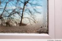 Schimmel an Silikon-Fensterfugen und Fensterdichtung ...