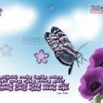 2015 Happy New Year Tamil Images And Kavithai Quotes