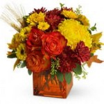 Autumn Expressions from Tammys Floral