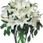 Perfect White Lillies from Tammys Floral