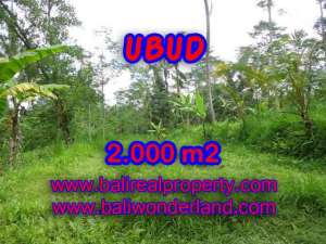 TANAH MURAH DI UBUD DIJUAL RP 850.000 / M2 - TJUB406