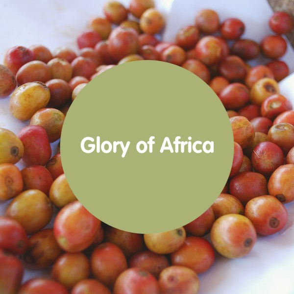 The Glory of Africa