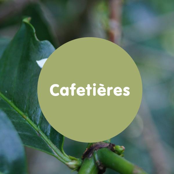 CafetiereBack