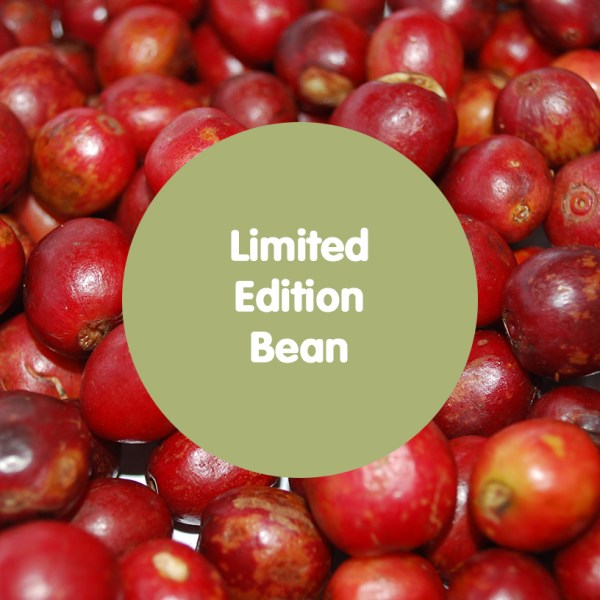 limited-edition-bean