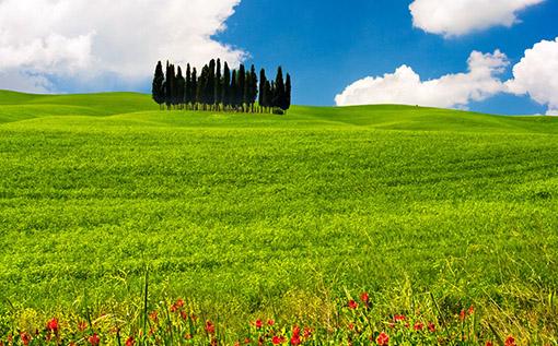 Tuscany-Hills_thumb
