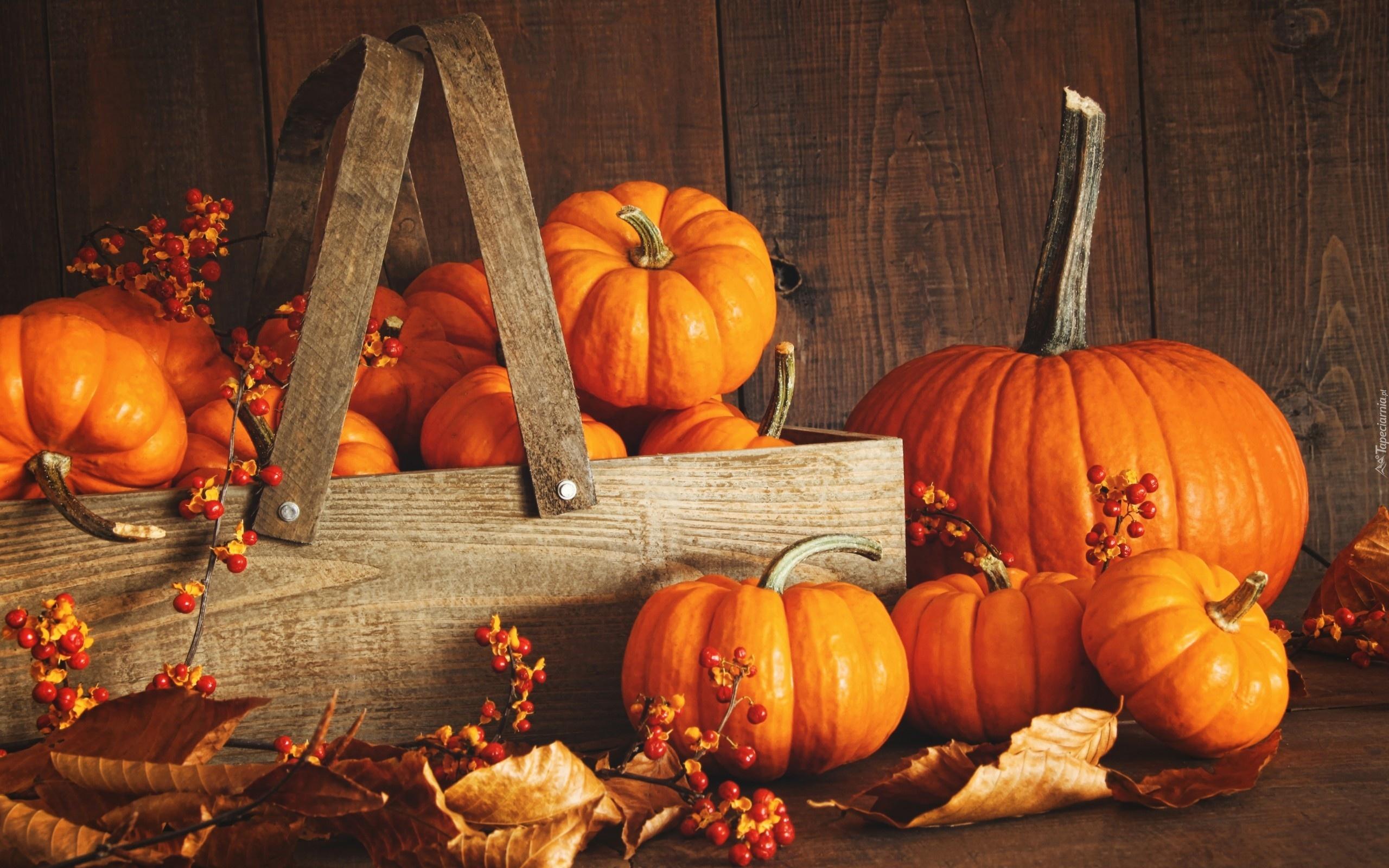 Fall Wallpaper Backgrounds Pumpkins Jesien Warzywa Dynia