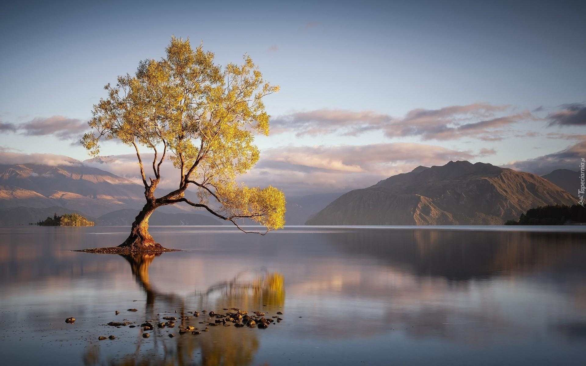 Fall Hd Wallpapers For Mac Nowa Zelandia Jezioro Wanaka G 243 Ry Drzewo Odbicie