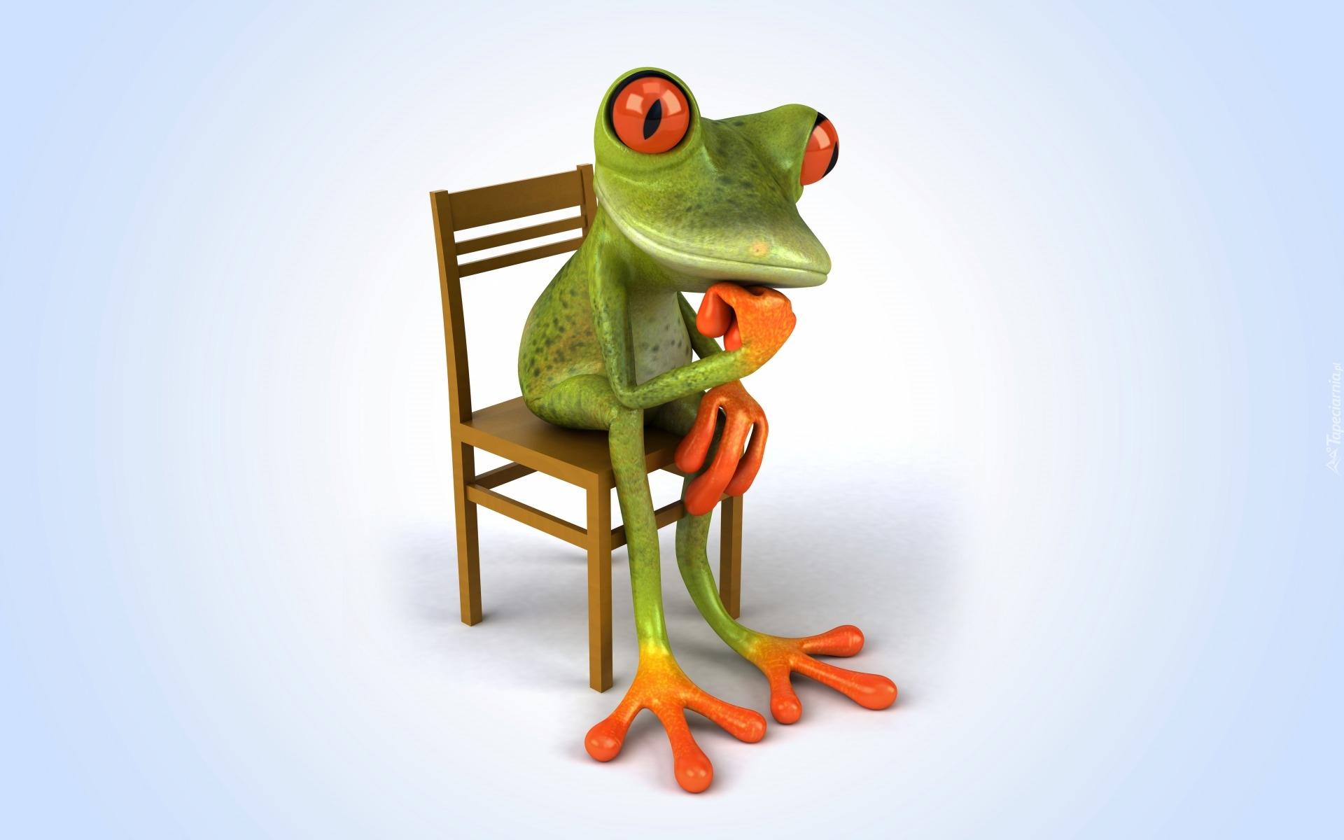Happy Birthday Hd 3d Wallpaper Zamyślona żaba Siedzi Na Krześle