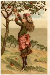 Vintage-Apple-Picking-Image-GraphicsFairy-685x1024