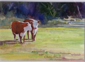 pict-0938a-cows