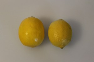 A Meyer Lemon (l) and a standard lemon (r).