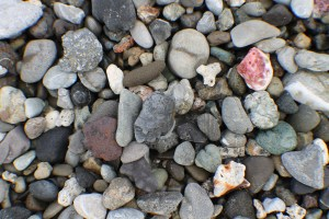 Beach rocks. With a few shells and coral thrown in for good measure.