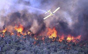 Tasmanian Bushfire water bomber
