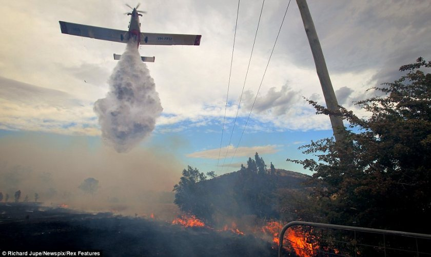Tasmanian Bushfire Water Bomber2