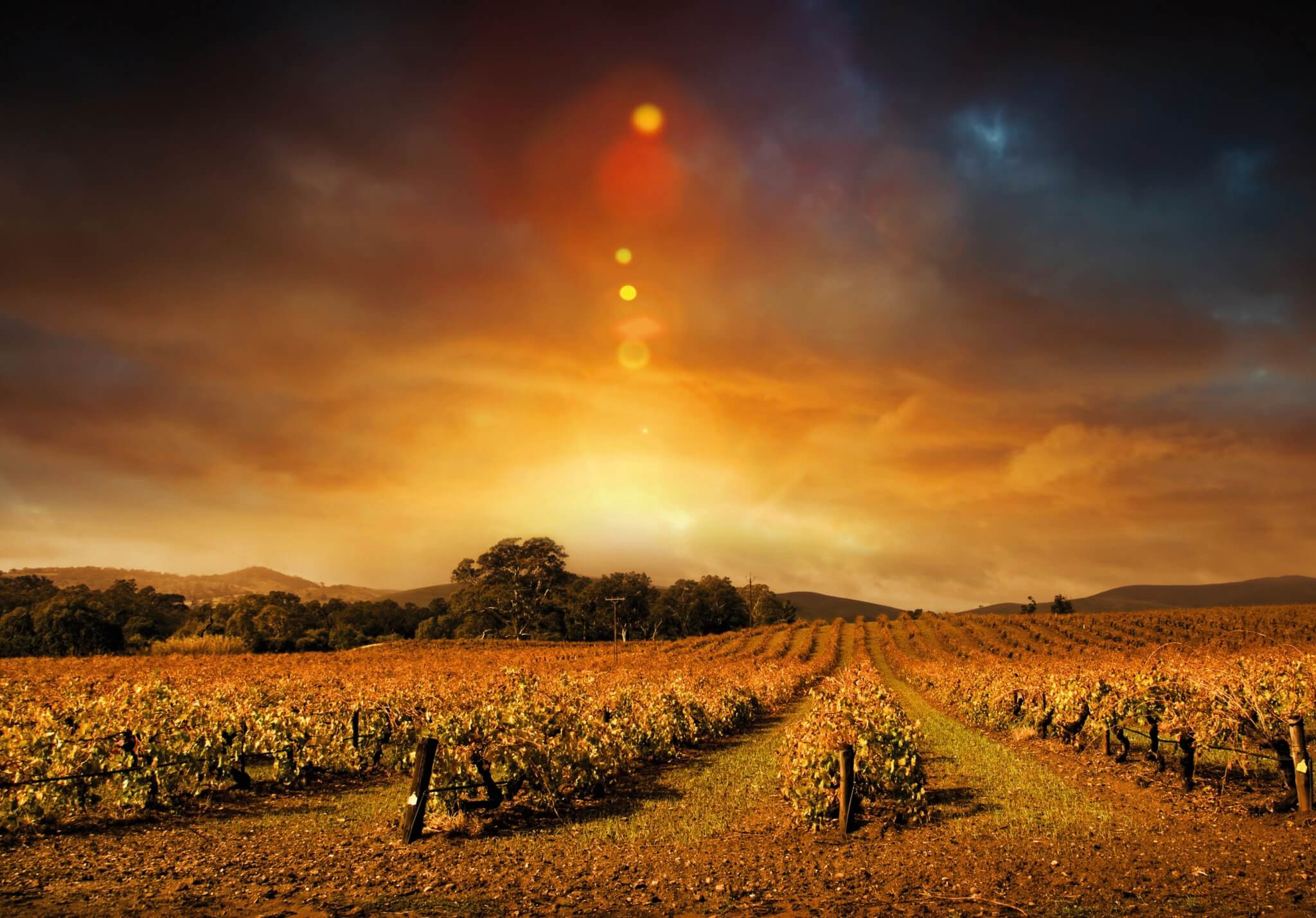 Adventure Quotes Wallpaper Wine Into The Night Tour In The Margaret River Wine Region