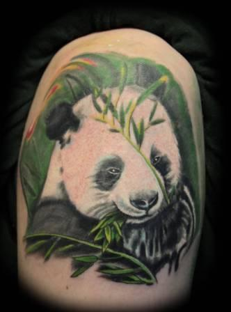 Black And Pink Flower Wallpaper Bear Tattoo Ideas And Bear Tattoo Designs Page 20