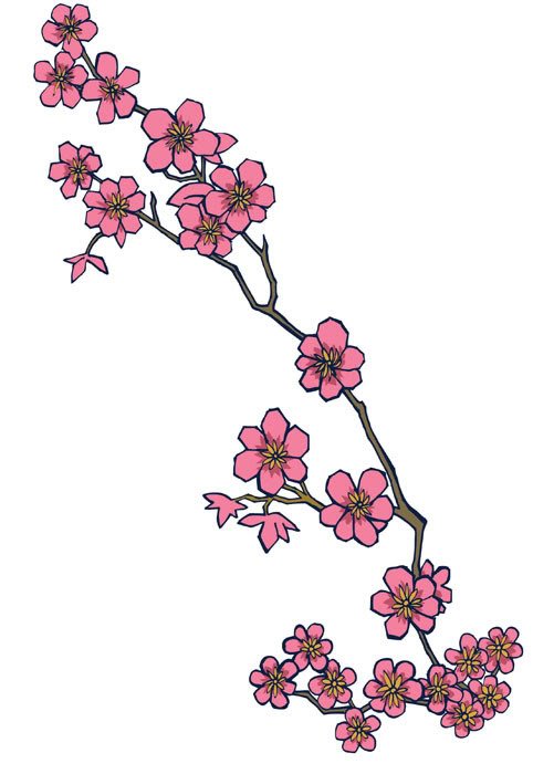 Nice Cherry Blossom Flowers Tattoo