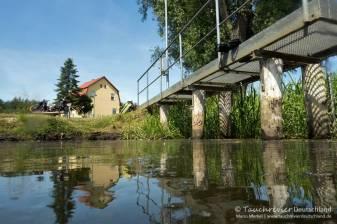 Einstieg, Esox lucius, Flusstauchen, Tauchen in der Spree, Tauchen in Brandenburg