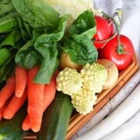 Conservare e Congelare le verdure crude e cotte