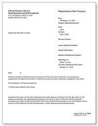 98+ Letter To Irs Template - Letter To Income Tax ...