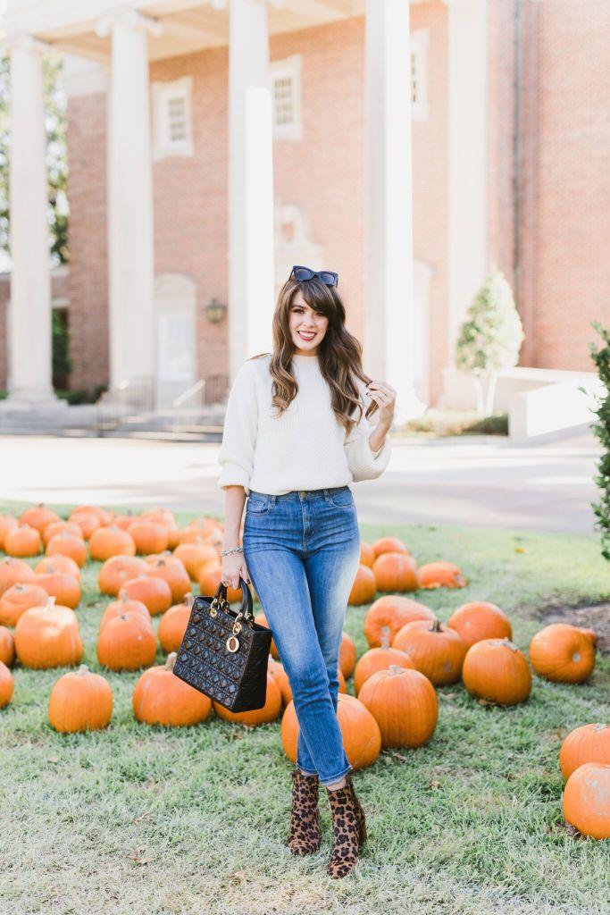 pumpkin-75_preview