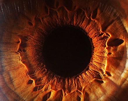 """Photo credit (eye macro photo) - """"Eyes don't lie"""" Suren Manvelyan"""