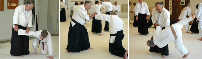 Wayne Brown, godan, began studying Aikido in 1967 under Ty Uno Sensei. In the 1970's he began studying under Akira Tohei Shihan. He has also been influenced by Clyde Takeguchi Shihan and Gordon Sakamoto Shihan. Wayne has been a member of TCAC since 1976 and currently is the Chief Instructor for the morning classes.