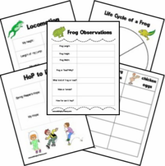 25 Easy Frog and Toad Ideas and Activities - Teach Junkie