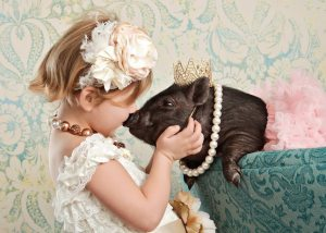 Piggy kisses