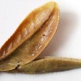 close up of the infused leaves of bai-mu-dan, aka white peony