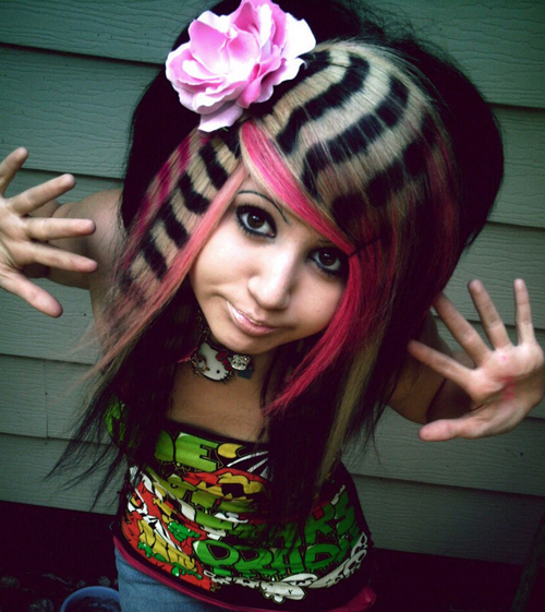 Emo Racoon Hair, Funny Haircuts, Bad Hair styles, worst hair, fashion fails, Funny pictures,