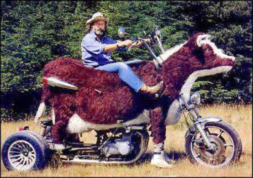 The Best Bad Redneck Vehicles, redneck cars funny vehicles there I fixed it awkward family photos ellen bad family photos wors bad tattoos worst cars redneck trucks redneck men redneck tractors redneck boats cow motorcycle