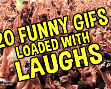 20 Funny Gifs Loaded with Laughs thumb