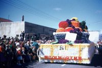 Fruit bowl float  Hawkes Bay region  Te Ara ...