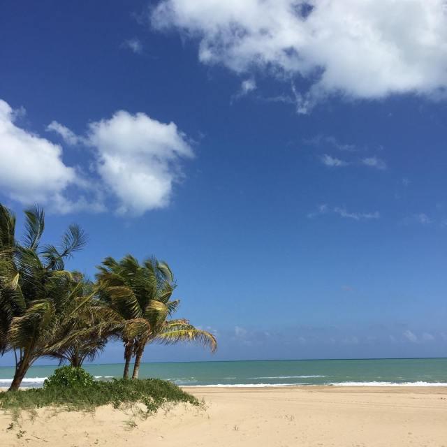 Dreaming of paradise... #takemeback #puertorico #nofilter #paradise