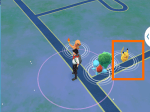 Starter Pokemon Go Pikachu