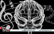The Impact of Music on Various Brain Regions