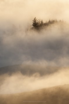 Mist phone backgrounds wallaper