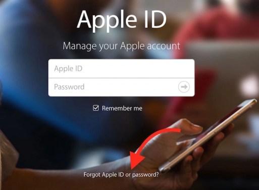 Forgot my Apple ID or Password