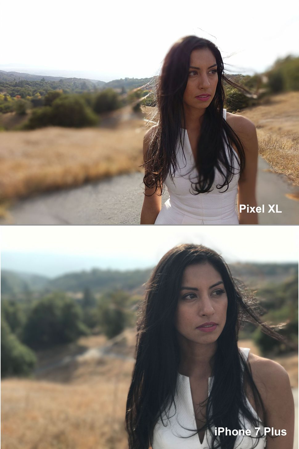 pixel-xl-vs-iphone-7-plus