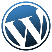 Why Should You Hire WordPress Developers For Customization Purposes