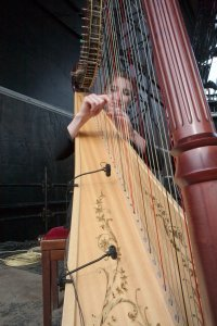 DPA 4099 instrument mics on the harp at Rick Wakeman's The Six Wives of Henry VIII performances at Hampton Court Palace